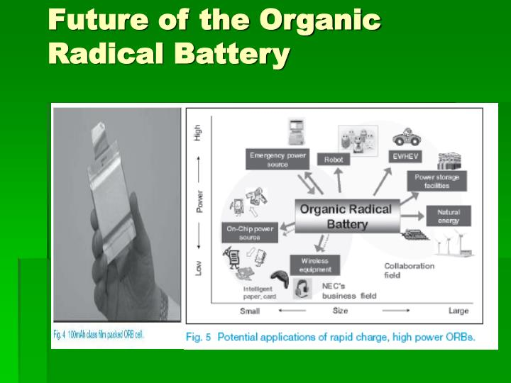 Future of the Organic Radical Battery
