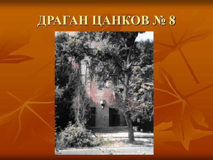 ДРАГАН ЦАНКОВ № 8
