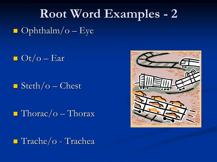 Root Word Examples - 2