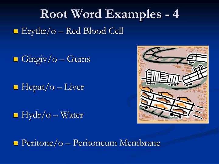 Root Word Examples - 4