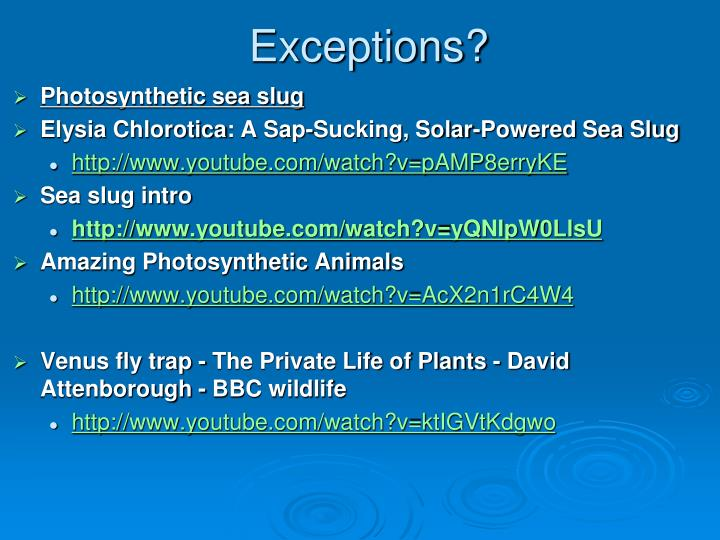 Exceptions?