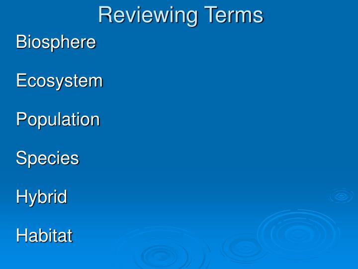 Reviewing Terms