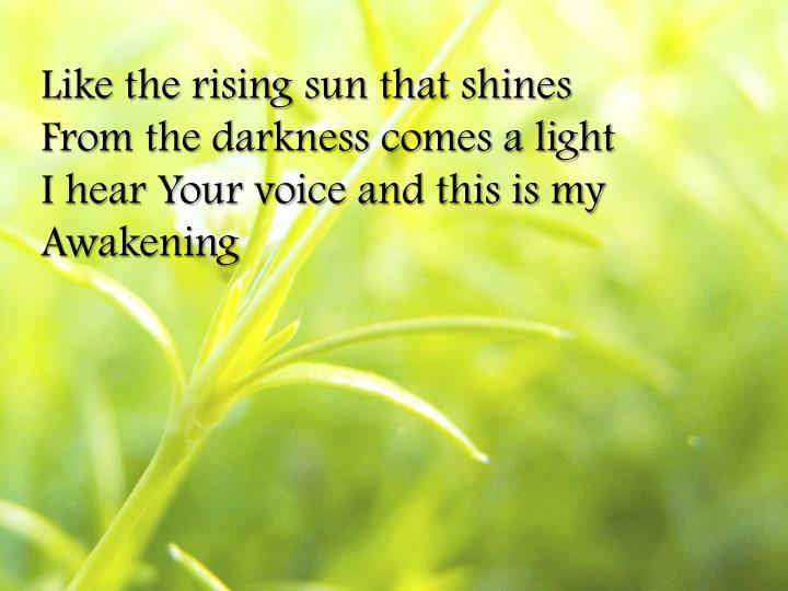 Like the rising sun that shines
