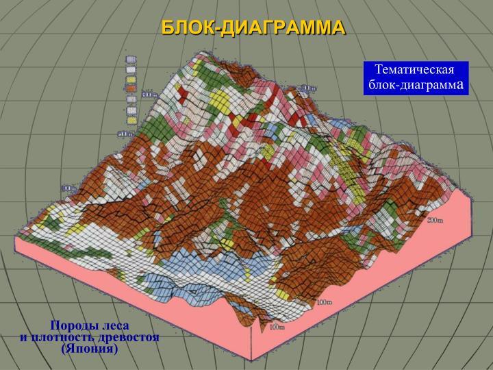 БЛОК-ДИАГРАММА