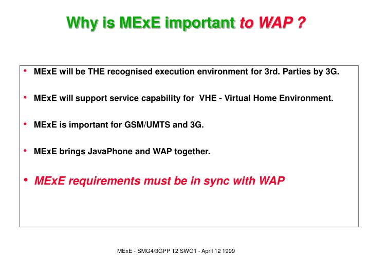 MExE will be THE recognised execution environment for 3rd. Parties by 3G.