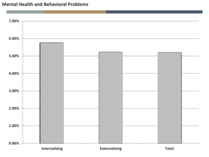 Mental Health and Behavioral Problems