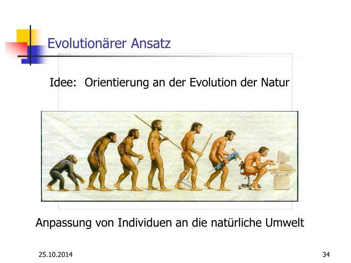 Evolutionärer Ansatz