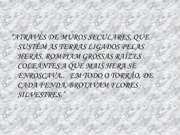 """""""ATRAVÉS DE MUROS SECULARES, QUE SUSTÊM AS TERRAS LIGADOS PELAS HERAS, ROMPIAM GROSSAS RAÍZES COLEANTES A QUE MAIS HERA SE ENROSCAVA..   EM TODO O TORRÃO, DE CADA FENDA, BROTAVAM FLORES SILVESTRES."""""""