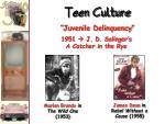 teen culture1
