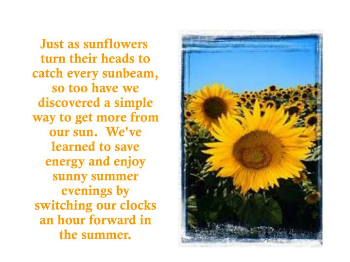 Just as sunflowers turn their heads to catch every sunbeam, so too have we discovered a simple wa...