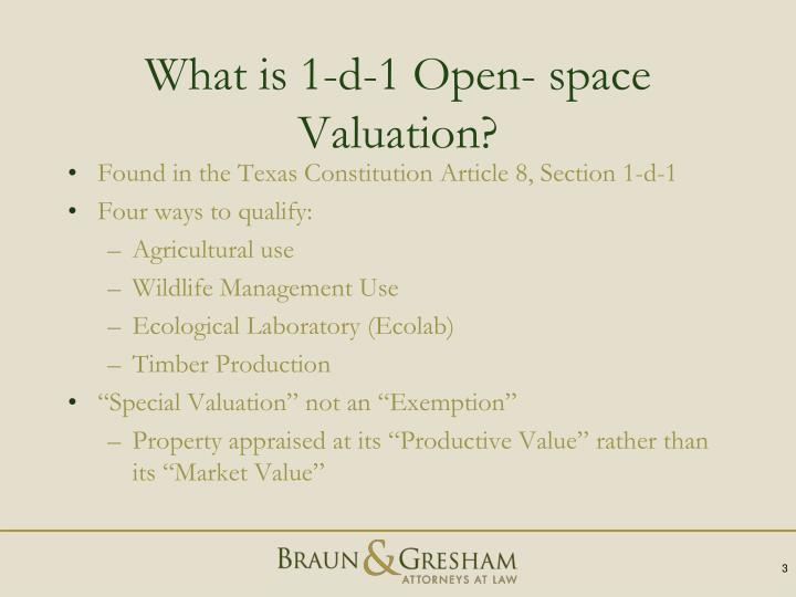 What is 1-d-1 Open- space Valuation?