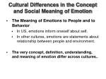 cultural differences in the concept and social meaning of emotion3
