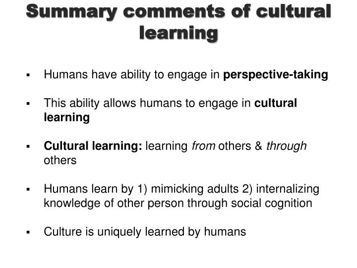 Summary comments of cultural learning