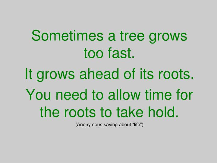 Sometimes a tree grows too fast.
