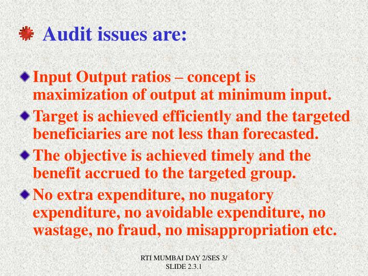 Audit issues are: