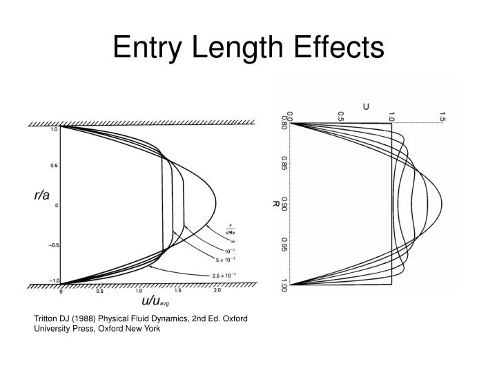 Entry Length Effects