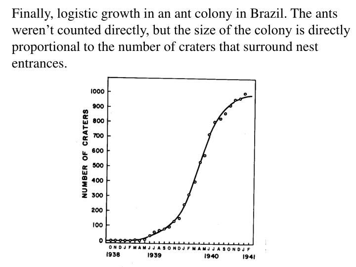 Finally, logistic growth in an ant colony in Brazil. The ants
