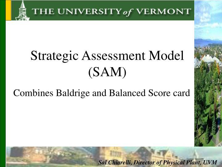 Strategic Assessment Model (SAM)