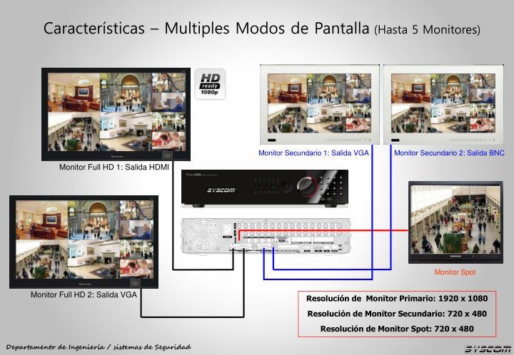 Monitor Secundario 1: Salida VGA