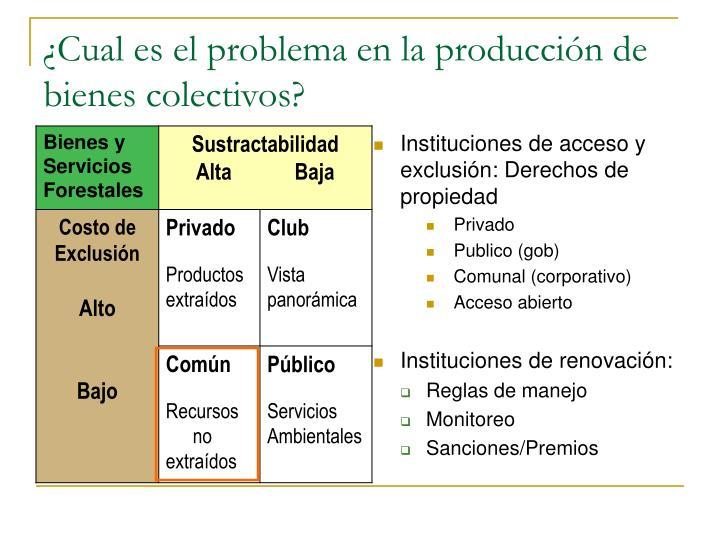 ¿Cual es el problema en la producción de bienes colectivos?