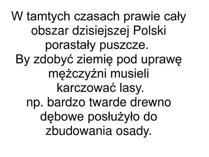 W tamtych czasach prawie cały obszar dzisiejszej Polski porastały puszcze.