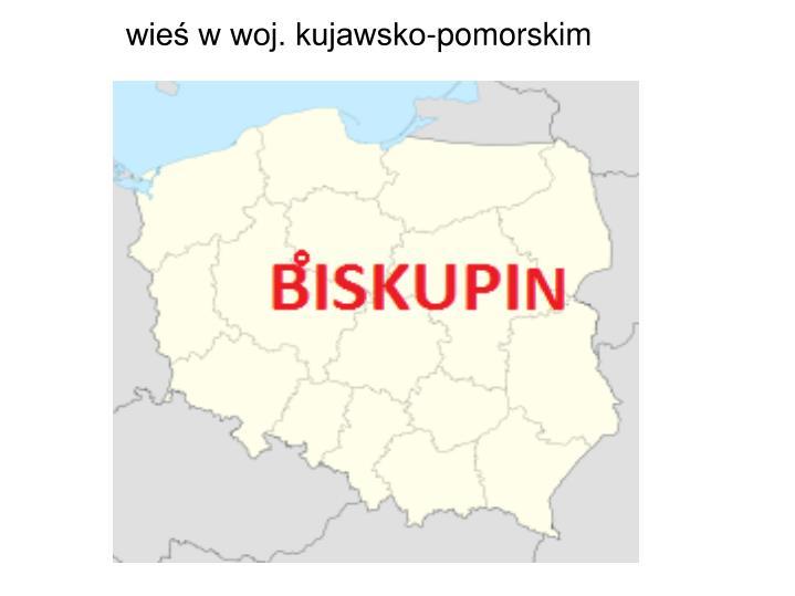 wieś w woj. kujawsko-pomorskim