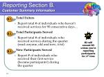 reporting section b customer summary information