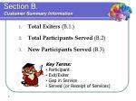 section b customer summary information