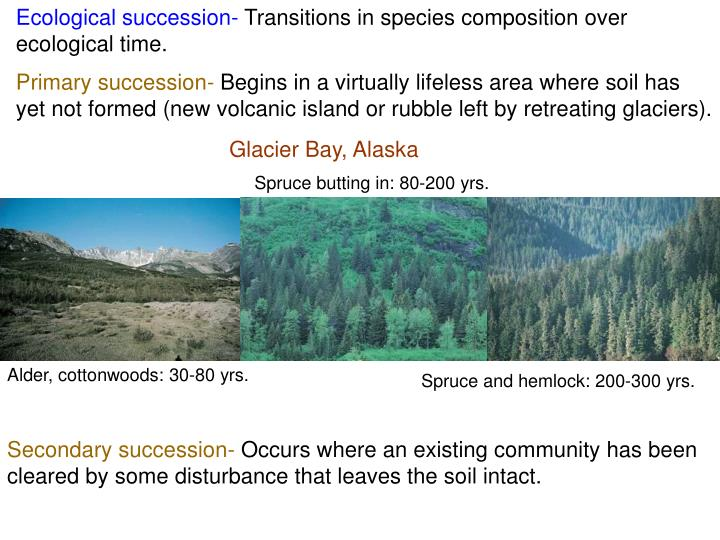 Ecological succession-