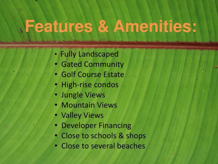 Features & Amenities: