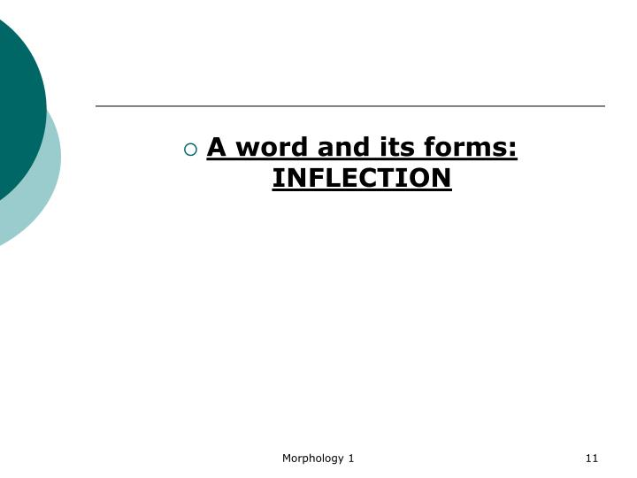 A word and its forms: INFLECTION