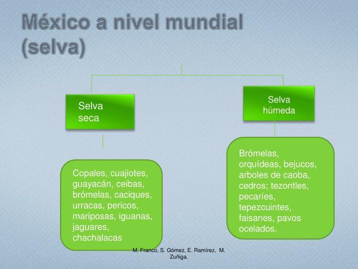 México a nivel mundial