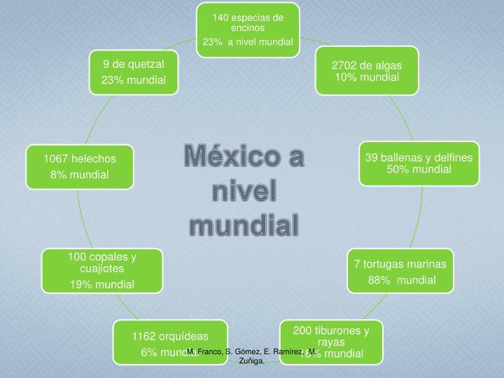 México a nivel