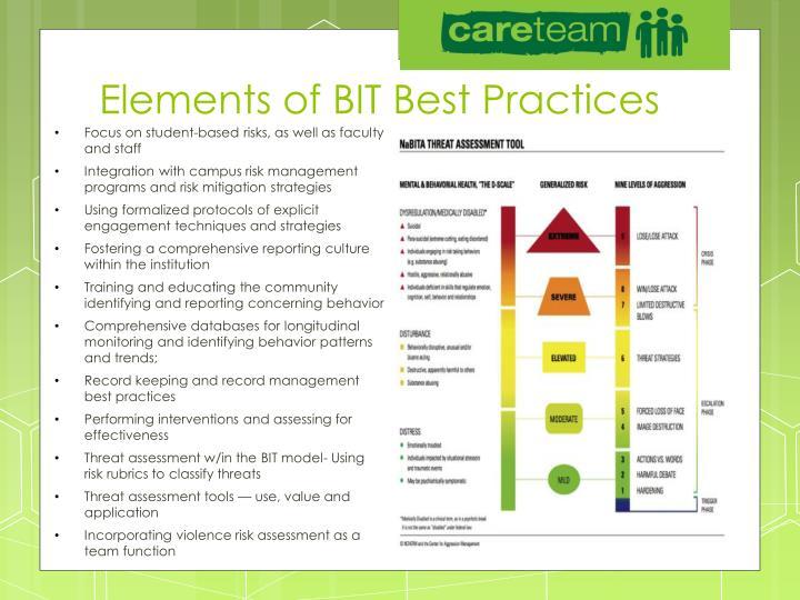Elements of BIT Best Practices