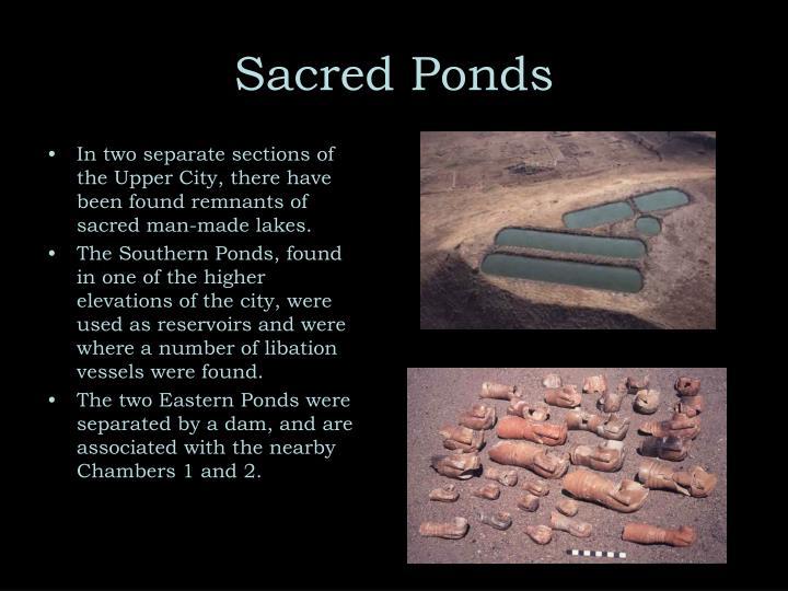 Sacred Ponds
