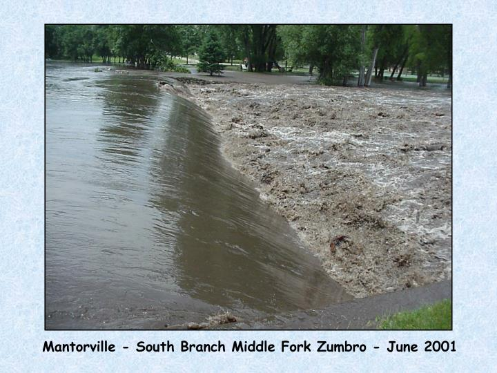 Mantorville - South Branch Middle Fork Zumbro - June 2001