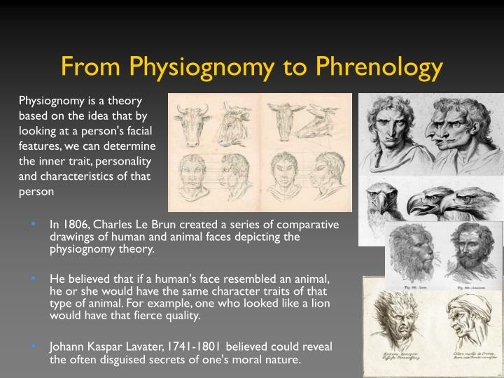 From Physiognomy to Phrenology