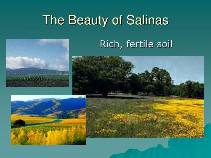 The Beauty of Salinas