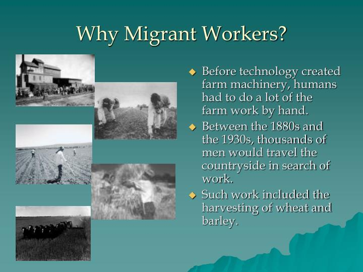 Why Migrant Workers?