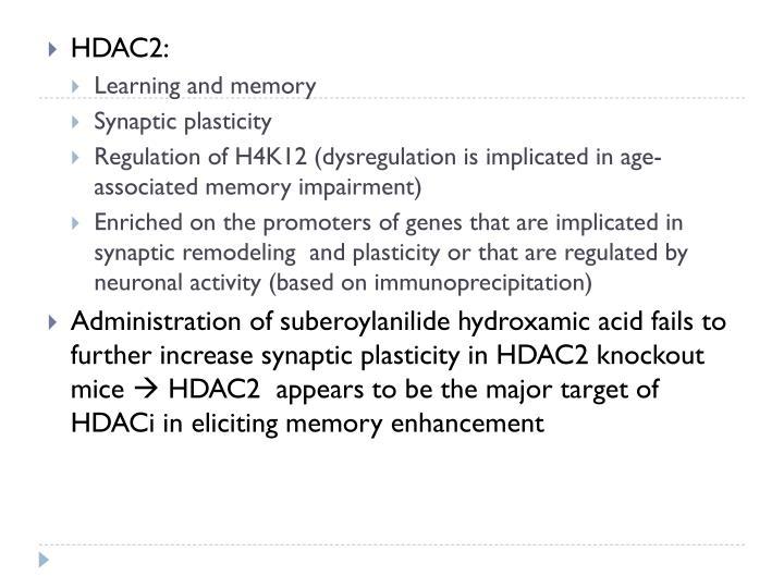 HDAC2:
