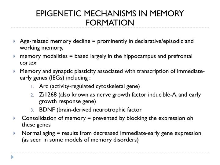 EPIGENETIC MECHANISMS IN MEMORY FORMATION