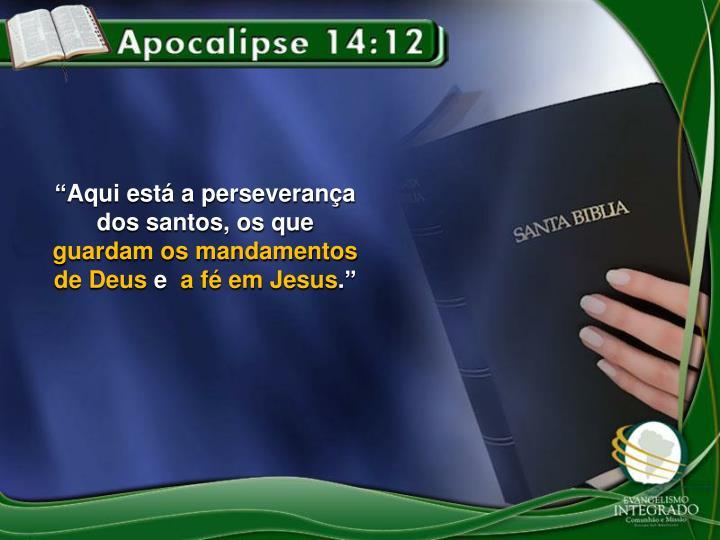 """""""Aqui está a perseverança dos santos, os que"""