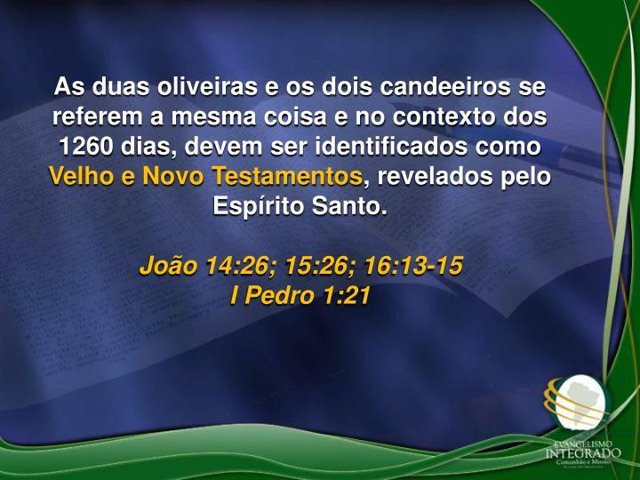 As duas oliveiras e os dois candeeiros se referem a mesma coisa e no contexto dos 1260 dias, devem ser identificados como