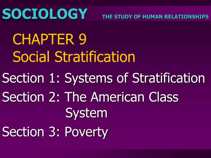 sociology the study of humanity essay
