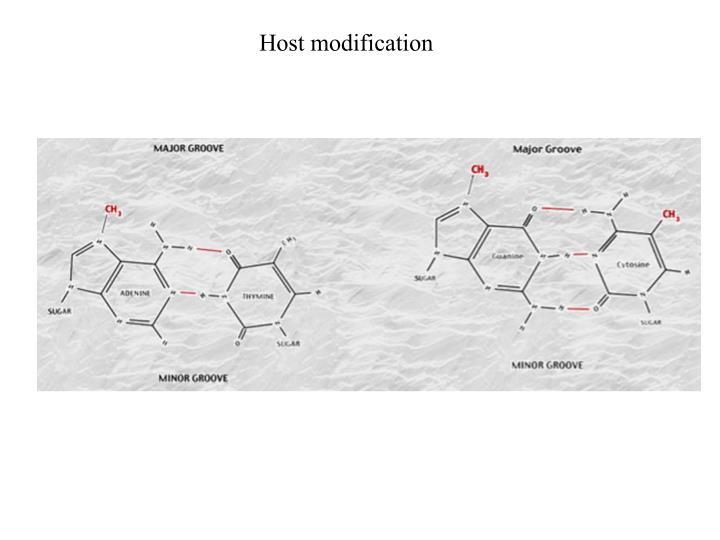Host modification