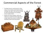 commercial aspects of the forest
