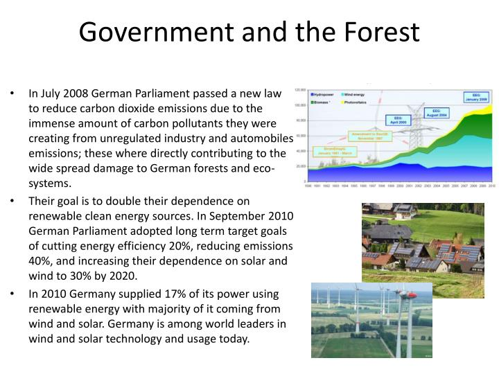 Government and the Forest