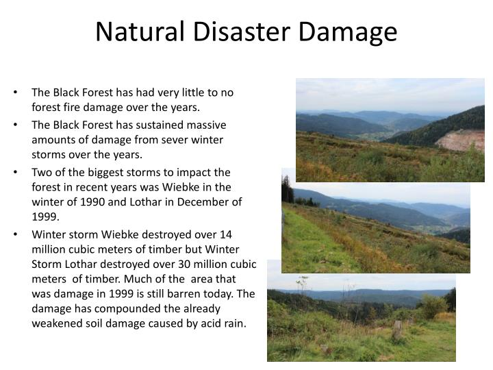 Natural Disaster Damage
