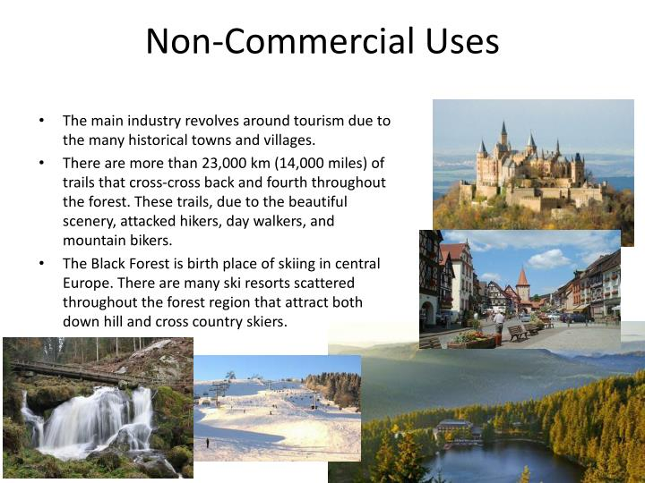 Non-Commercial Uses