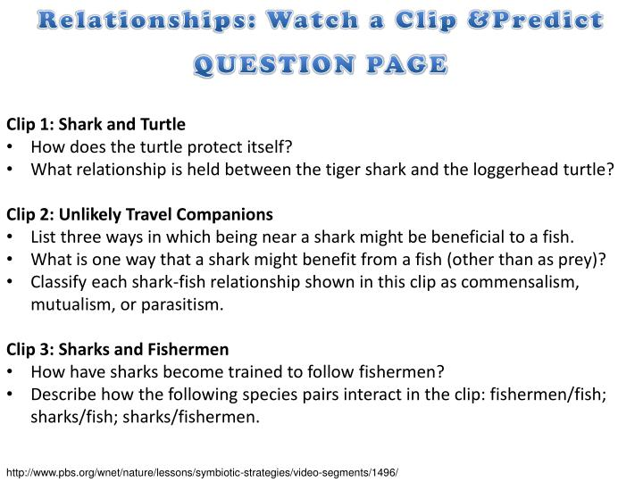 Relationships: Watch a Clip &Predict